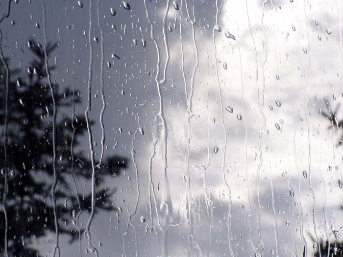 باران، عشق، فریدون مشیری